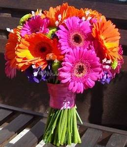 The 25 best Gerbera wedding bouquets ideas on Pinterest