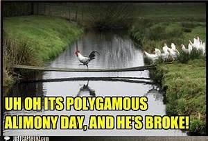 funny-captions-polygamous-alimony-day | uldissprogis