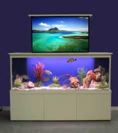 aquarium designer innovative fish tank fresh design