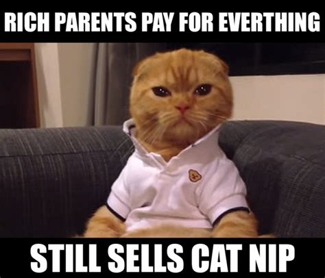 Rich Cat Meme - rich cat memes image memes at relatably com