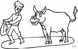 Bull Coloring Pages Toreador Bulls Para Colorear Matador Dibujos Highland Fighting Cattle Scottish Supercoloring Riding Plays Coloringpages101 Drawing Printable Pintar sketch template