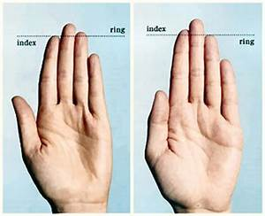 Study: Finger Length Linked To Penis Size QUEER ME UP