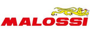 home design elements reviews the new malossi logo the brand s experience and