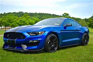 2019 in Velocity Blue! | 2015+ S550 Mustang Forum (GT, EcoBoost, GT350, GT500, Bullitt ...