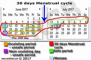 Menstrual Cycle And Ovulation Period  Made Easy To Understand