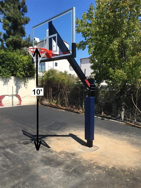 basketball goal regulation height  team