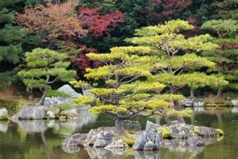 Giardini Giapponesi In Miniatura by Giardini Zen Giardini Orientali