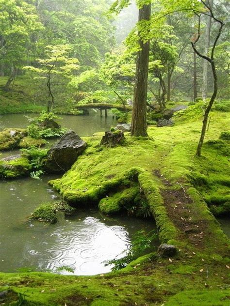 foto de Moss covered bridge Kyoto Japan photo on Sunsurfer