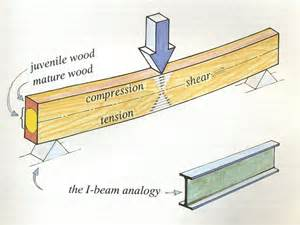 carbon fiber repair options for historic buildings woodwork part 2