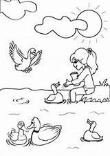 Coloring Duck Ducks Tulamama Farm Printable Dinosaur sketch template