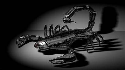 Scorpion Wallpapers Zodiac 3d Metal Background Scorpio