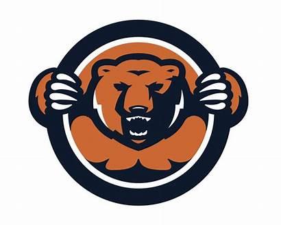 Bears Chicago Bear Clipart Nfl Clip Cliparts