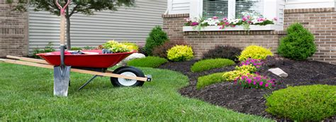landscaping al s lawn garden chatham kent