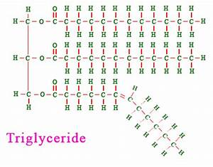Image Gallery lipid monomer