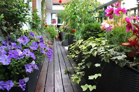 Sichtschutz Garten Fetter by Vielfalt Durch Topfkultur Gartenzauber