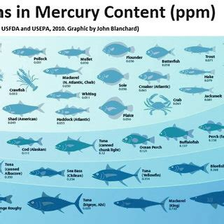 mercury  fish history sources pathways effects