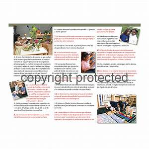 Pamphlet – The Importance of Montessori for the ...