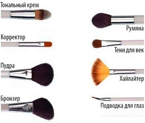Как выбрать кисти для макияжа виды назначение способы использования