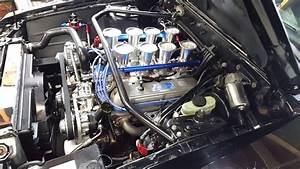 1982 Mustang  U0026quot Cobra U0026quot  Cold Startup