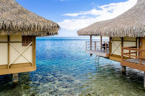 luxury thatched roof honeymoon bungalows stock photo image  roof bungalow