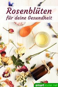 Rosen Zurückschneiden Wann Und Wie Weit : tee und umschl ge aus rosenbl ten f r deine gesundheit ~ Buech-reservation.com Haus und Dekorationen