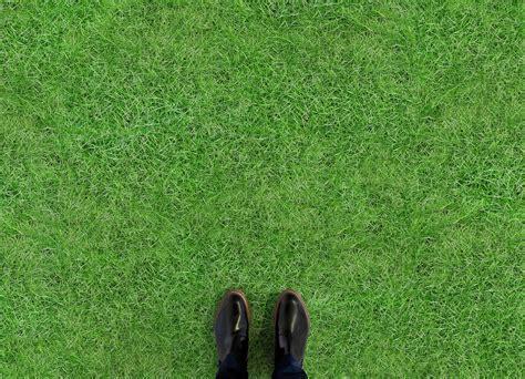 Lawn   Atrafloor