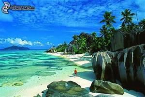 Bilder Von Palmen : strand ~ Frokenaadalensverden.com Haus und Dekorationen