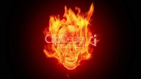 fire skull hd loop royalty  video  stock footage