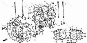 Honda Atv 2004 Oem Parts Diagram For Crankcase