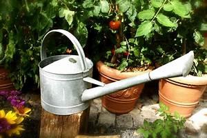 Blumen Für Garten : verzinkte gie kanne f r den garten blumen gie kanne kanne als blumengie er brunnen speier ~ Frokenaadalensverden.com Haus und Dekorationen