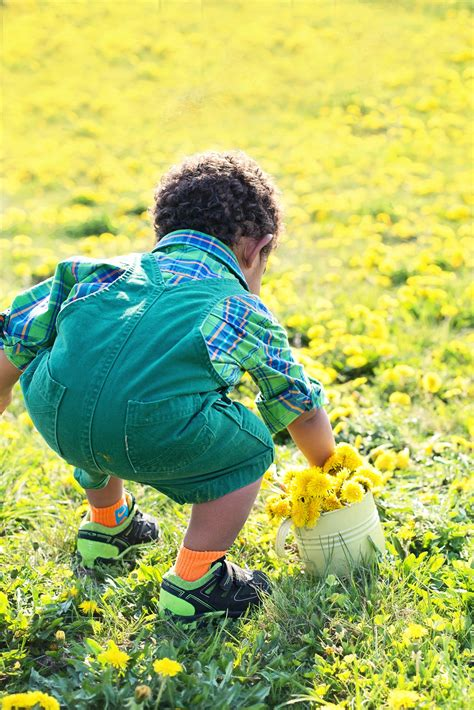 images nature grass person field lawn meadow