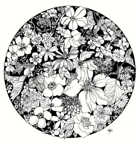 Black Kitchen Ideas - marcella wylie summer strawberries floral illustration