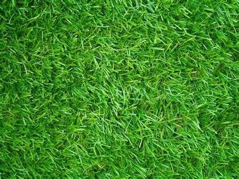 home plans with indoor artificial grass field top view texture stock photo