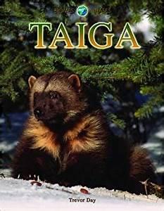 Life In The Taiga : taiga plants and animals car interior design ~ Frokenaadalensverden.com Haus und Dekorationen