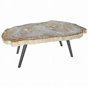 andrianna shamaris petrified wood coffee table for sale at With petrified wood coffee table for sale