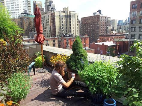 nyc manhattan penthouse rooftop garden drip irrigation