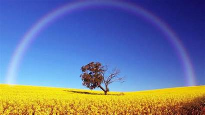 Rainbow Wallpapers Widescreen Definition