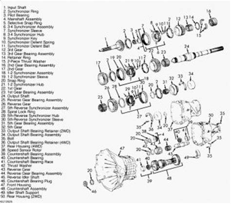 Chevy Manual Nv3500 Transmission Diagram by Dodge Nv3500 Transmission Dodge Wiring Diagram Images