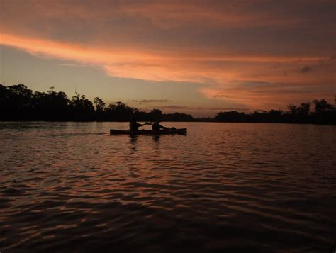 Canoes Adelaide by Canoe The Riverland Adelaide