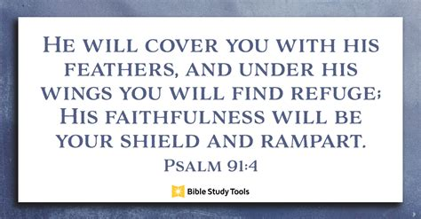cover    feathers psalm
