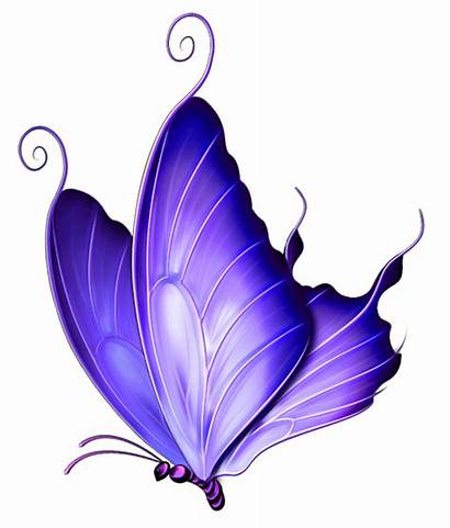 Butterfly Clipart Transparent Purple Background Clipground