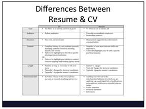 title in resume means resume writing for undergraduates