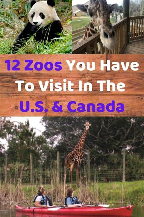 canada zoos coolest later zoo animals