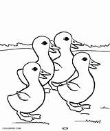 Duck Coloring Pages Ducks Printable Still Getcolorings Cool2bkids Pond Animals Getdrawings Colorings sketch template