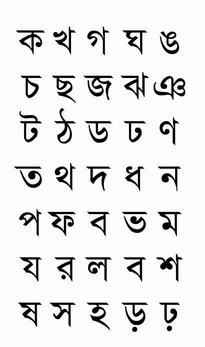 Bengali Alphabets Svg Fonts Letters Alphabet Script