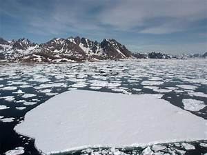 Scientists find pocket of warm water trapped under Arctic ...  Arctic