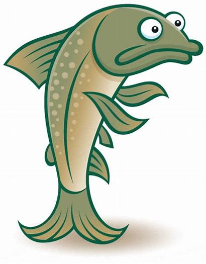 Fish Funny Cod Cartoon Animation Gifs Clipart