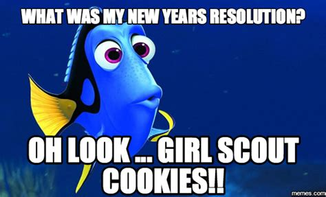 Girl Scout Cookie Memes - home memes com