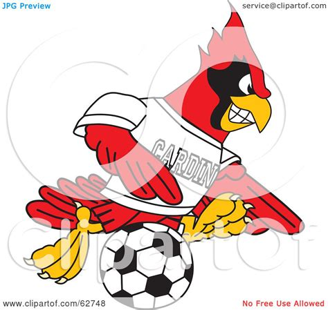 royalty free rf clipart illustration of a cardinal character school mascot soccer