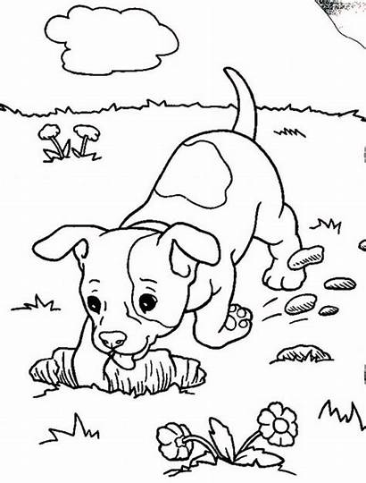 Coloring Boxer Pages Dog Puppy Realistic Digging